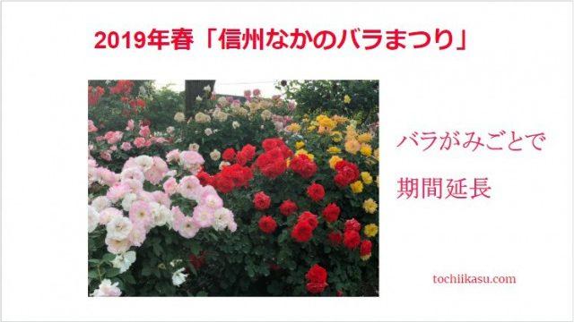 美しいバラ園